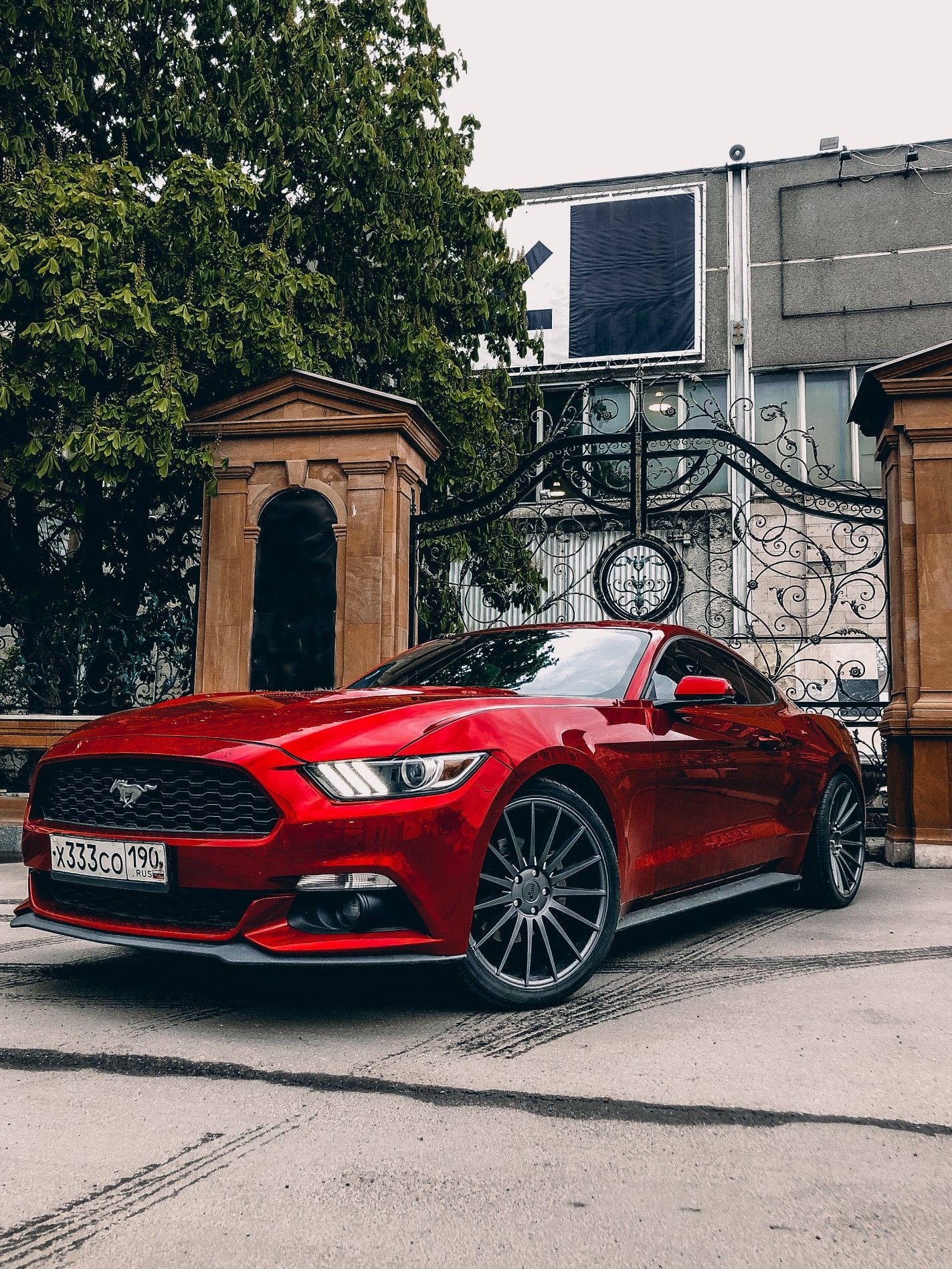 red-mustang